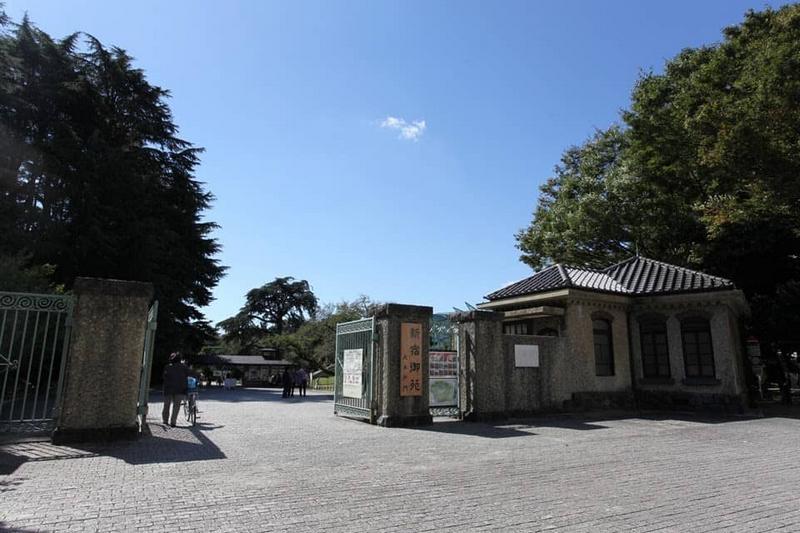 Kinh Nghiệm Ngắm Hoa Anh Đào Ở Công Viên Shinjuku Gyoen, Tokyo - Ảnh 6