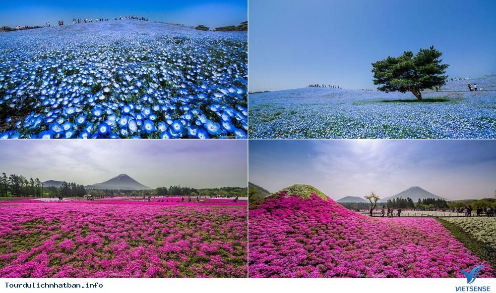 Du lịch Nhật Bản du khách đừng bỏ lỡ những điểm đến tuyệt đẹp này - Ảnh 3