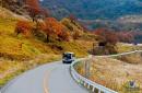 Tour ngắm lá đỏ tháng 10& 11: TOKYO - NIKKO - HAKONE