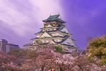 Dịu Dàng Sắc Xuân Nhật Bản Hành Trình Osaka – Nara – Kyoto – Kobe – Osaka