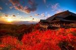 Tour Du lịch Nhật Bản Mùa Lá Đỏ 4 ngày 3 đêm