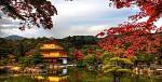 Xao xuyến thu Nhật Bản: TOKYO-NIKKO-FUJI- NAGOYA-KYOTO-OSAKA