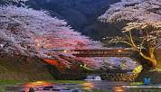 TOKYO - KAWAGUCHi - HANKONE - FUJI 5D4N