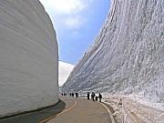 Khám Phá Cung Đường Tuyết Trắng Tại Nhật Bản