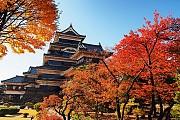 Du Lịch Nhật Bản Mùa Thu Ngắm Vẻ Đẹp Lá Phong Rực Rỡ