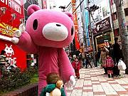 Giải Mã Những Câu Hỏi Thú Vị Về Đất Nước Nhật Bản
