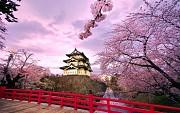 Một số điều bạn nên biết khi đi du lịch Nhật Bản