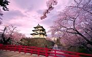 Một vài kinh nghiệm tự đi du lịch Nhật Bản