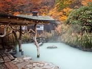Những địa điểm ngắm lá đỏ tuyệt vời khi đi du lịch Nhật Bản