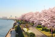 Những điều lưu ý khi tới Nhật Bản