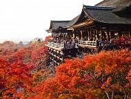 Kyoto - Cố đô nổi tiếng bậc nhất tại Nhật Bản