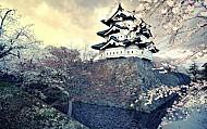 Nagoya - Thành Phố Quyến Rũ Ẩn Mình Trong Vẻ Ngoài Hiện Đại