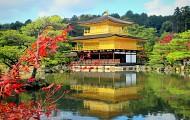 Nhật bản không chỉ có hoa Anh Đào