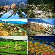Những Địa Điểm Không Nổi Tiếng Nhưng Tuyệt Đẹp Ở Nhật Bản