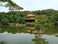 Tour 1 ngày thăm thú Kyoto