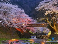 Du Lịch Nhật Bản 5D4N: TOKYO - KAWAGUCHi - HANKONE - FUJI