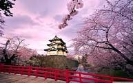 Tour du lịch mùa đông Nhật Bản: Tokyo - Phú Sĩ - Nagoya - Kyoto - Osaka bay VNA