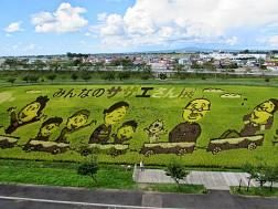 Ngắm nhìn tác phẩm Tanbo ato nghệ thuật trên cánh đồng lúa của Nhật Bản