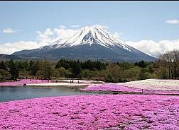 Nhật Bản nổi tiếng về cái gì?