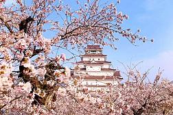 Những điểm tham quan cổ kính ở Nhật Bản thích hợp để bạn du xuân