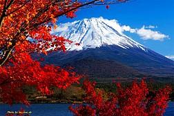 Tour Nhật Bản ngắm lá đỏ siêu khuyến mại ngày 19 & 25/10/2017: Tokyo - Phú Sĩ - Osaka - Kyoto - Nagoya