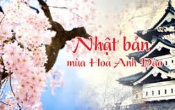 Du lịch Nhật Bản ngắm hoa anh đào Khởi hành 28 & 30/3; 02 & 04/04 cùng Vietnam Airlines