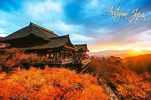 Tour mùa thu vàng Nhật Bản 6 Ngày