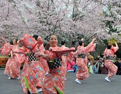 8 Lý Do Bạn Chọn Du Lịch Nhật Bản
