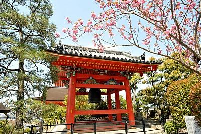 Đến Cố Đô Kyoto Nhật Bản- Chiêm Ngưỡng Chùa Thanh Thủy Kiyomizu-dera