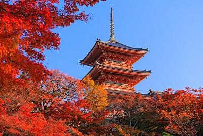 Giới Thiệu Chùa Kiyomizu Khi Tới Cố Đô Kyoto Nhật Bản