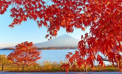 Lời khuyên bổ ích cho chuyến du lịch Nhật Bản hoàn hảo