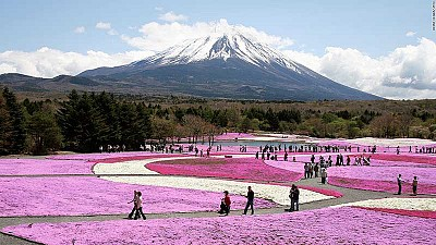 Nhật Bản - Hãy nắm bắt những suy nghĩ giản dị thường ngày của người dân xứ Hoa Anh Đào