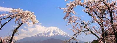 Thời điểm nào sẽ phù hợp để đi du lịch Nhật Bản