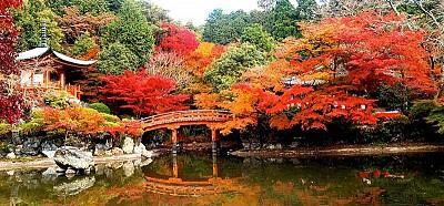 Trải nghiệm đầy thú vị khi du lịch Nhật Bản tháng 9