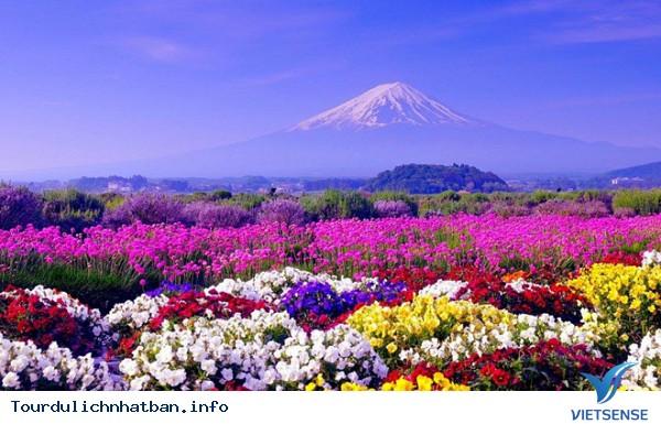 Du lịch Nhật Bản hút khách nhất thế giới - Ảnh 2