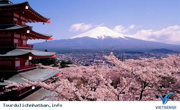 Một số điều bạn nên biết khi đi du lịch Nhật Bản - Ảnh 3