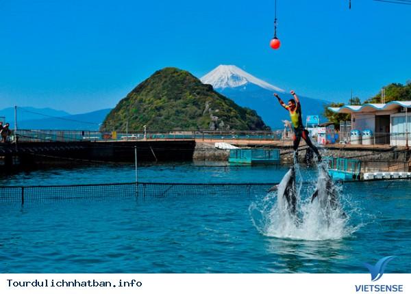 Tại sao lại đi du lịch Nhật Bản vào mùa hè - Ảnh 5