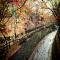 Bộ ảnh đẹp hút hồn của du học sinh tại Kobe Nhật Bản