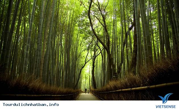 Những Điểm Tham Quan Tại Cố Đô Kyoto - Ảnh 4