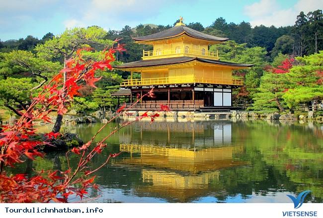Nhật bản không chỉ có hoa Anh Đào - Ảnh 1