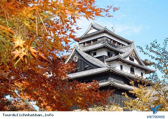 Những địa điểm ngắm lá đỏ tuyệt vời khi đi du lịch Nhật Bản - Ảnh 7