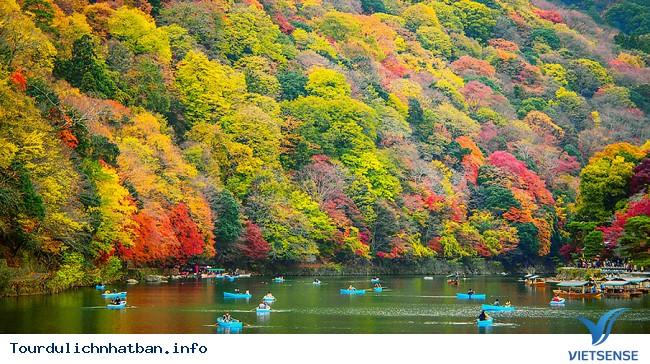 Những địa điểm ngắm lá đỏ tuyệt vời khi đi du lịch Nhật Bản - Ảnh 5