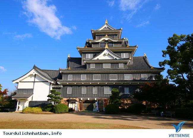 Những địa điểm ngắm lá đỏ tuyệt vời khi đi du lịch Nhật Bản - Ảnh 9