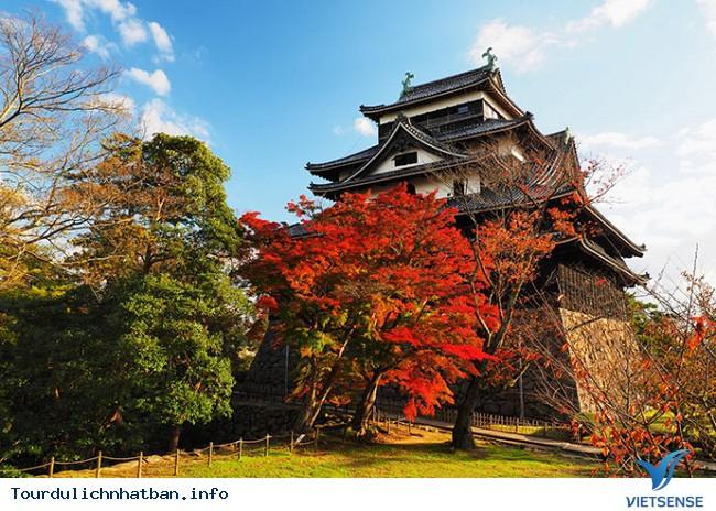 Những địa điểm ngắm lá đỏ tuyệt vời khi đi du lịch Nhật Bản - Ảnh 10