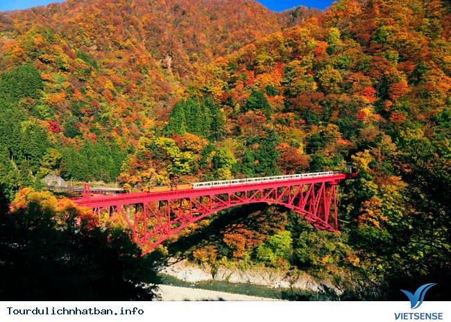 Những địa điểm ngắm lá đỏ tuyệt vời khi đi du lịch Nhật Bản - Ảnh 6