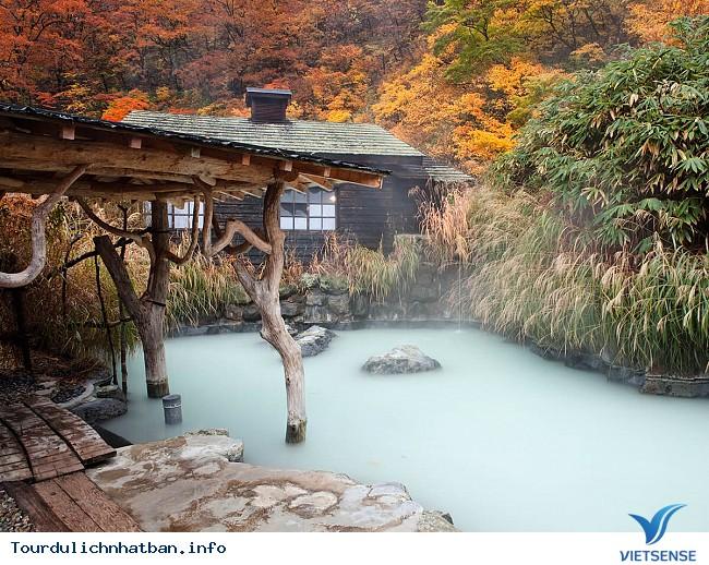 Những địa điểm ngắm lá đỏ tuyệt vời khi đi du lịch Nhật Bản - Ảnh 1