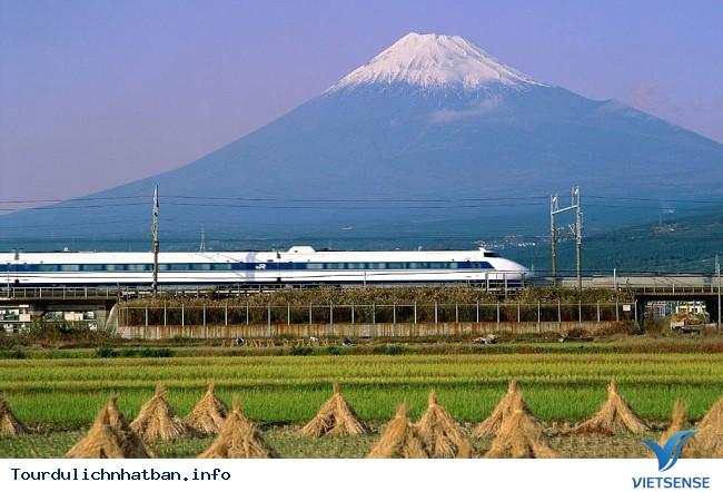 Review hành trình du lịch Nhật trong 9 ngày - Ảnh 2