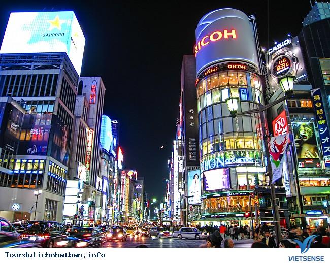Tokyo Nhật Bản - Ảnh 4