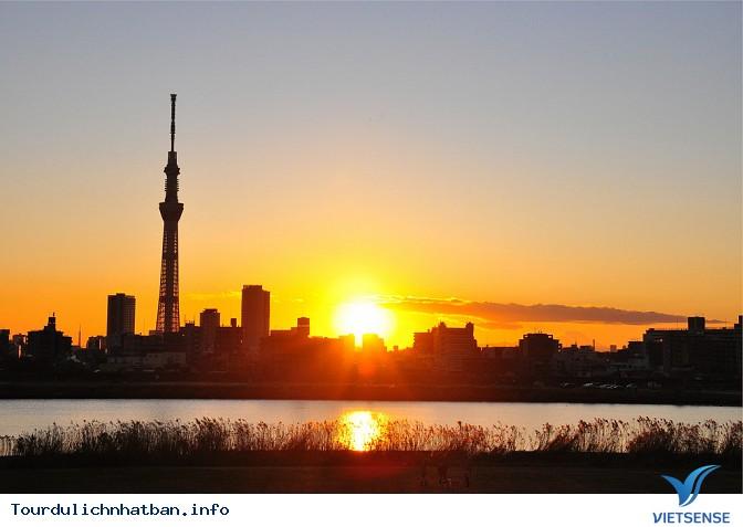 24 giờ khám phá hết vẻ đẹp của thủ đô Tokyo Nhật Bản - Ảnh 1