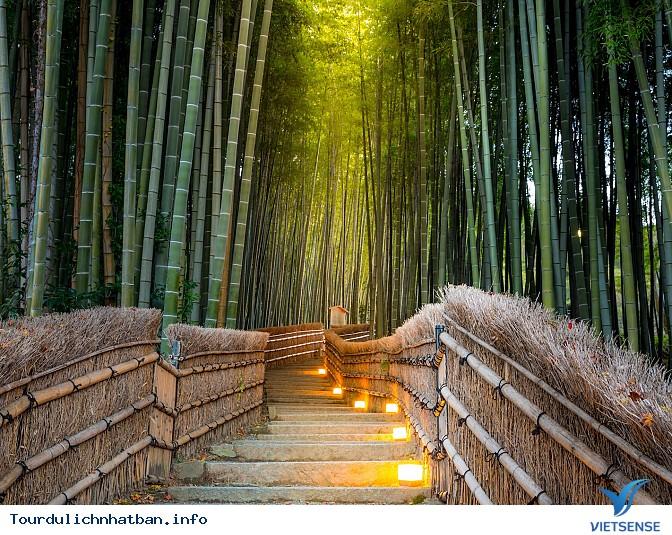 Du lịch Nhật Bản – chiêm ngưỡng vẻ đẹp tuyệt vời của 2 thành phố Kyoto và Tokyo - Ảnh 5